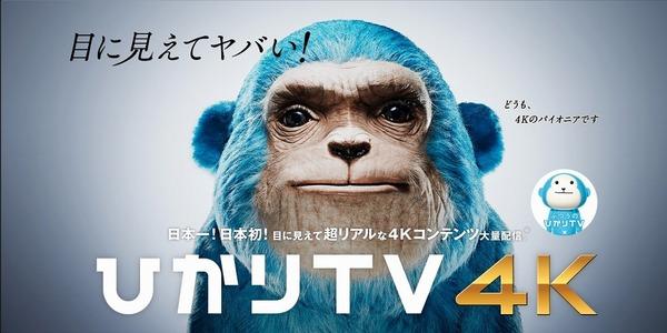 4K 光TV.jpg