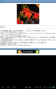 Screenshot_2012-10-20-19-14-17.png