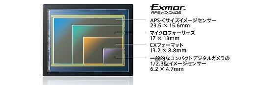 y_NEX-F3_apsc_size.jpg